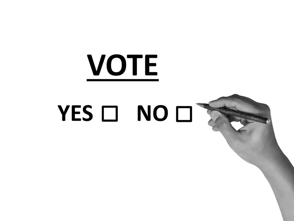Nabiałym tle podkreślony czarny napis VOTE, pod nim dwa napisy: YES oraz NO - z odpowiadającymi im kratkami, obok dłoń trzymająca długopis - gotowa do postawienia znaku X w jednej z kratek.